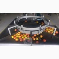 Калібратор для сортування яблук по розміру