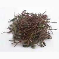 Зимолюбка (трава) 1 кг