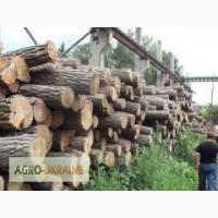 Куплю дрова акации и дуба (кругляк) оптом
