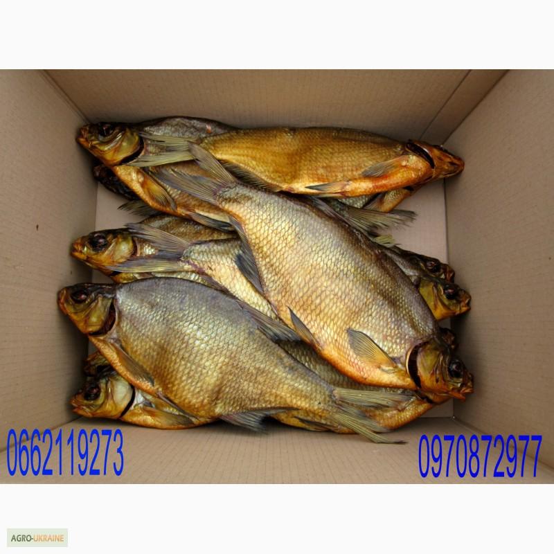 Куплю леща объявления продажа готового бизнеса рыбопереработки