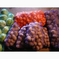Купуємо овочі на постійній основі (картоплю, моркву, буряк, капусту)