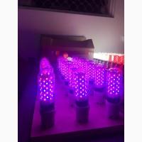 Світлодіодні лампи та світильники