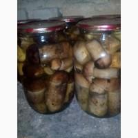 Продам мариновані гриби