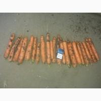 Продам морковку