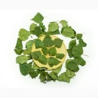 Куплю оптом листя берези