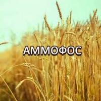 Досконалі добрива, нитроаммофоска, сульфат аммония, азофоска, суперагро, аммофос