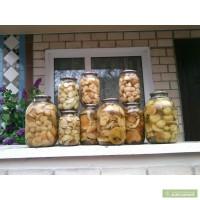 Продам білі гриби мариновані та сушені