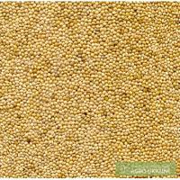 Продам семена просо жёлтого