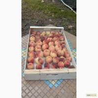 Ящики для персика