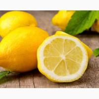 Закупаем лимоны и цитрусовые в ассортименте оптом