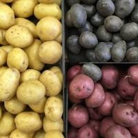 Картофель с Белоруссии