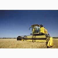КУПЛЮ Пшеница, Подсолнух, Рапс и тд