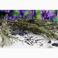 Лаванда (трава) 1 кг