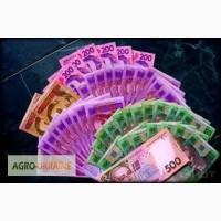 Деньги, кредит, займ, рассрочка, перекредитование для аграриев