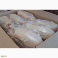 Продам качок породи Мулард жива вага та тушки