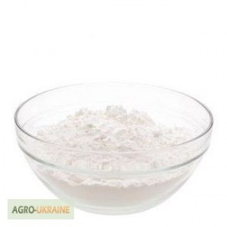 Сухой яичный белок (Альбумин)