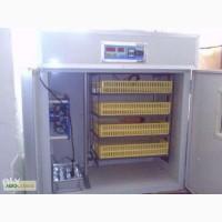Промышленные инкубаторы, б/у инкубаторы