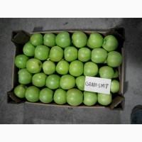 Яблуко на ЕКСПОРТ