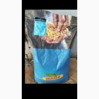 Продам семена кукурузы Монсанто DKC 440, DKC 3717, DKC 3507, DKC 4014, DKC 3511