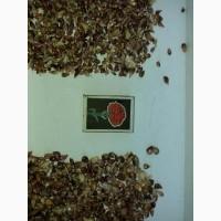 Чеснок семена воздушка Сорт Любаша (бульбочьки)
