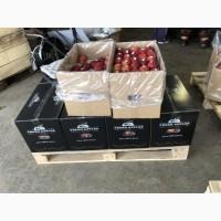 Продам бушели для яблок от фирмы поставщика