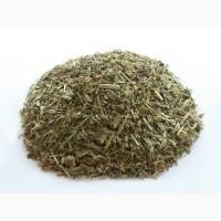 Зопник колючий (железняк) (трава) 1 кг