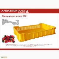 Ящик пластиковый для ягод 600х400х116 10 кг (чешка)