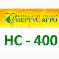 Продам гібрид кукурузи НС-400 (НЕРТУС-АГРО)