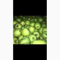 Продам оптом яблоки калибр 6, 5-7, 5 сорт Гольден, Симиренко