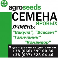 Семена ярового ячменя. Элитные семена. Производитель Агротрейд