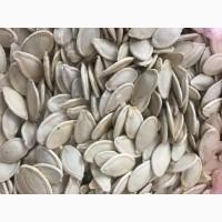 Продам насіння гарбузове