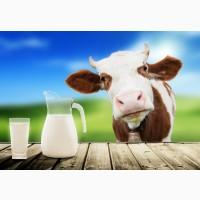 Компания реализует молоко оптом
