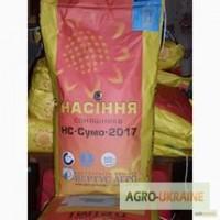 Продам посівний матеріал насіння соняшнику Сумо