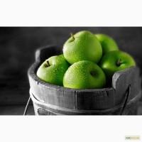 Продам яблоки: Голден, Симиренко, Элиза, Аскольд, Айдаред. ОПТ