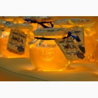 Покупаю мед 2017 года в ХЕРСОНЕ
