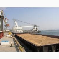 Закупка пшениці 2-3-4-5-6 кл фураж з ПДВ і без ПДВ