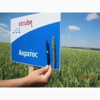 Стресостійка озима пшениця АКРАТОС для інтенсивної технології в усіх зонах вирощування
