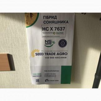 Продам посівний соняшник НС Х 7637