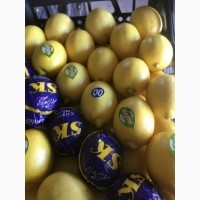 Лимоны и фрукты из Испании