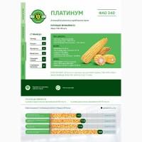 Семена кукурузы Платинум (ФАО 340), 2018 г.у