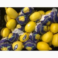 Лимон «Ентер» Турція