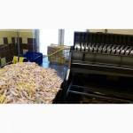 Продажа Экспорт куриной лапы класс А