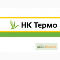 Продам гібрид кукурузи НК ТЕРМО