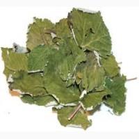 Лист малины сушеный