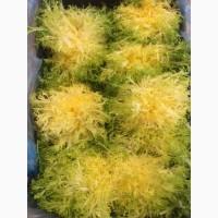 Продаем салат фризе оптом, мелким оптом