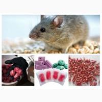 АНТИМЫШИН АНТИМИШИН препарат для борьбы с грызунами – крысами, мышами и полевками
