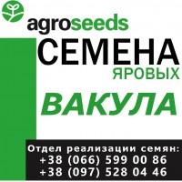 Семена от производителя. Яровой ячмень, сорт Вакула, элита 2019 года с документами
