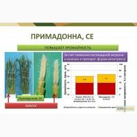 Примадонна - новый гербицид для защиты зерновых культур ( Щелково Агрохим) Цена 10 $/л