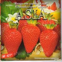 Азия клубника