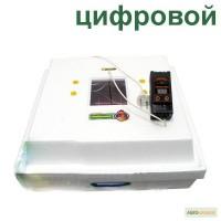 Инкубатор Рябушка-70 ламповый, цифровой терморегулятор, механический переворот